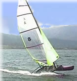 Standard catamaran